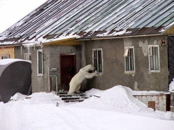 Има ли някой в къщи?