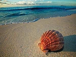 Къде ще почивате през лятото?