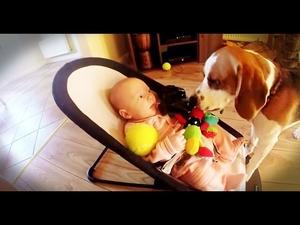 Кученце се извинява на бебе, че му е взело играчката