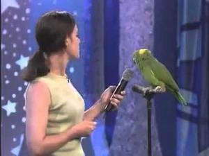 Един пеещ папагал ще ви изуми!