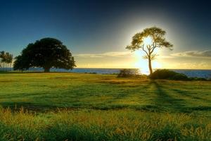 Красива природа