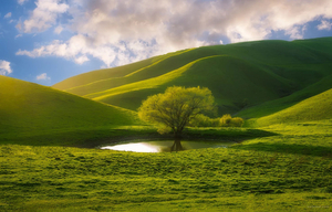 Уникалната красота на природата
